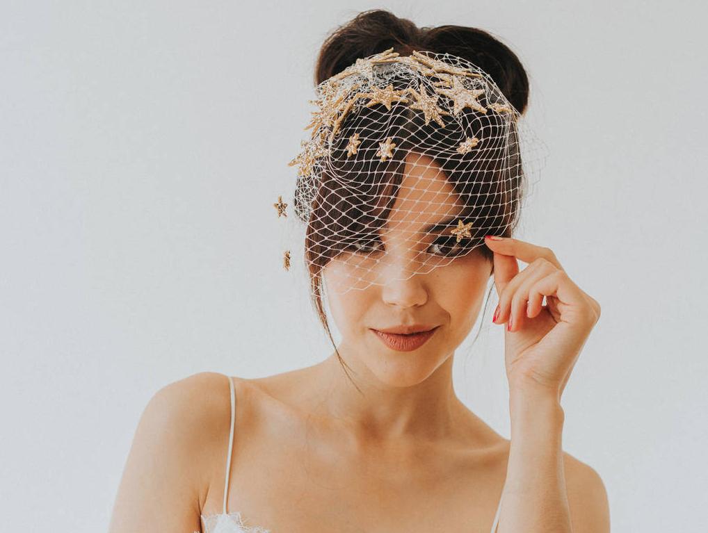 birdcage-veil