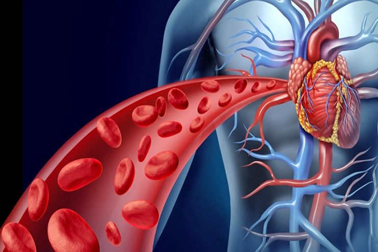 improve-blood-circulation